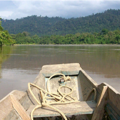 Join the Perak River Safari (700 meter from hotel)